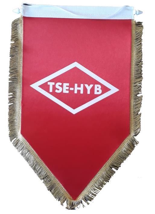 TSE - HYS